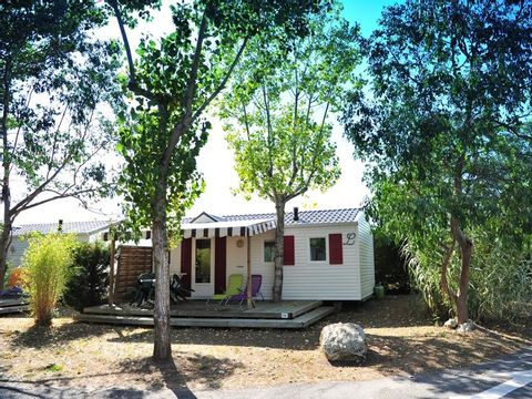 MOBILHOME 4 personnes - COTINIERE
