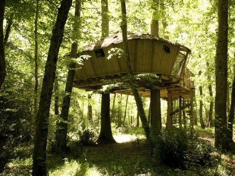 Camping Cabanes de la Belle - Camping Vienne - Image N°3