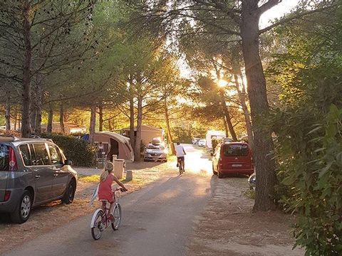 Vaucluse  Camping Fontisson - Camping Vaucluse - Afbeelding N°9