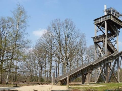 Camping Parc de Nibelle - Camping Loiret - Image N°6
