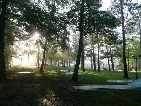 Camping Parc de Nibelle - Camping Loiret - Image N°5