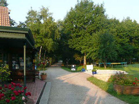 Camping Parc de Nibelle - Camping Loiret - Image N°8