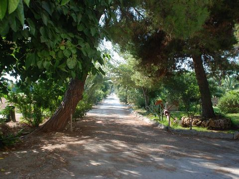 Agriturismo Terrauzza Sul Mare - Camping Syrakus - Image N°3