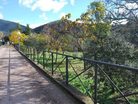 Camping Puente Nuevo - Camping Cordoue - Image N°12