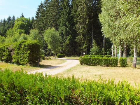 Camping Les Granges Bas - Camping Vosges - Image N°5