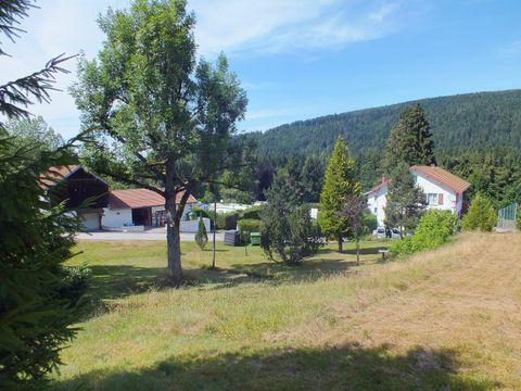 Camping Les Granges Bas - Camping Vosges - Image N°3