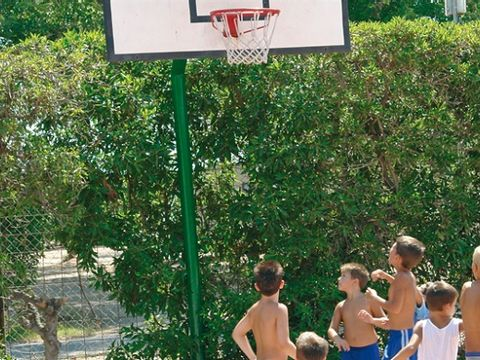 Camping Coll Vert - Camping Valence - Image N°6