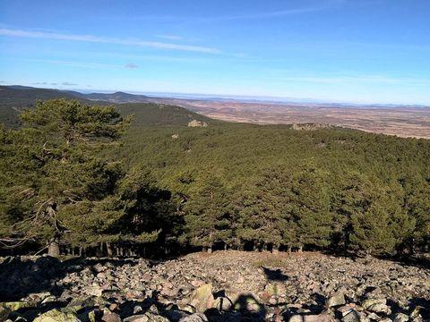 Camping Sierra de Albarracin - Camping Aragon - Espagne - Image N°9