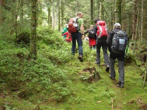 Camping Au Clos de la Chaume - Camping Sites et Paysages - Camping Vosges - Image N°12