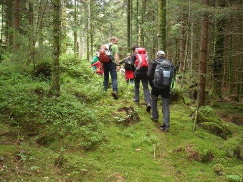Camping Au Clos de la Chaume - Camping Sites et Paysages - Camping Vosges - Image N°23