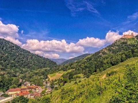 Camping Au Clos de la Chaume - Camping Sites et Paysages - Camping Vosges - Image N°45