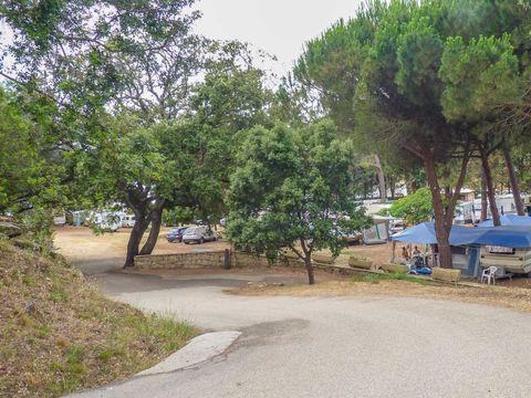 Camping Aglio - Camping Corse du sud