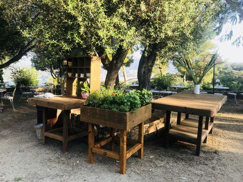 Camping Vigna Maggiore - Camping Córcega - Image N°12