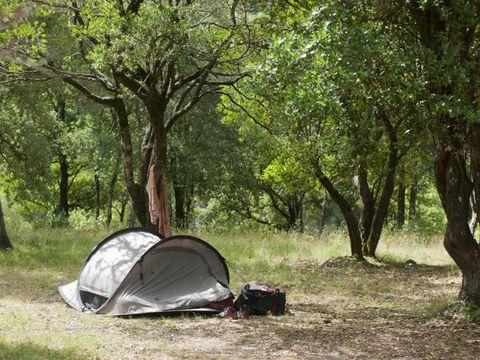 Camping aire naturelle de Mariani - Camping Corse du nord