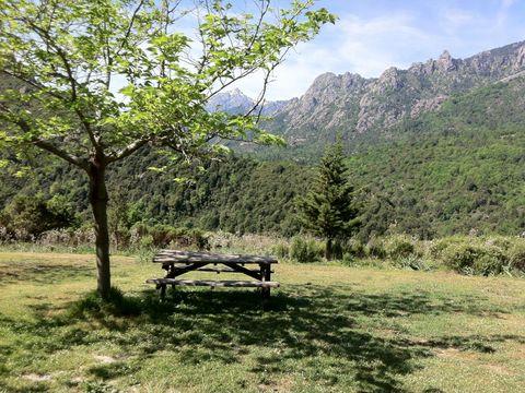 camping aire naturelle la ferme de Peridundellu - Camping Corse du nord