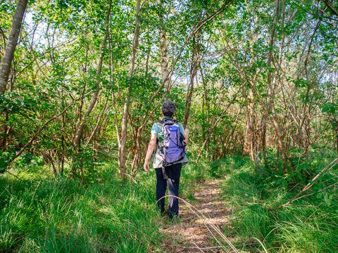 Tour Opérateur et particuliers sur camping La Réserve - Funpass non inclus - Camping Landes - Image N°32