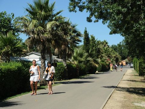 Camping Les Marsouins - Camping Pyrenees-Orientales - Image N°19