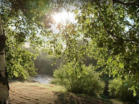 Camping La Cigale de l'Allier - Camping Lozere - Image N°11