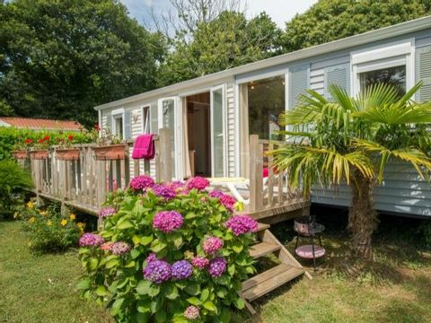 MOBILHOME 4 personnes - Sterne ****