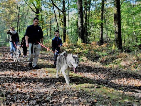 Camping Le Pas De L'ours - Camping Ariege - Image N°27