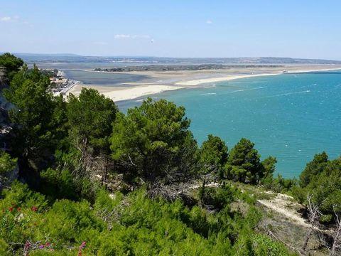 Domaine Presqu'ile de la Franqui - Camping Aude - Image N°11