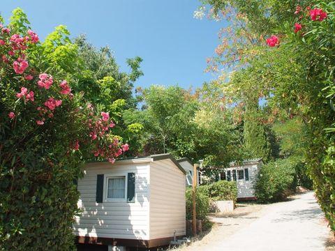 Camping Parc des Fontanettes - Camping Var - Image N°5