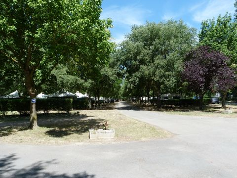 Camping à l'ombre des Micocouliers - Camping Aude