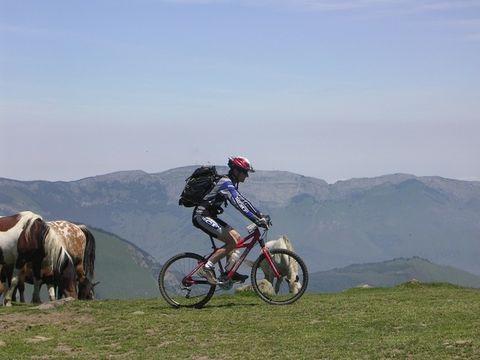 Camping Beau Rivage - Camping Pyrenees-Atlantiques - Image N°21