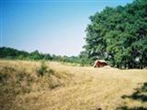Camping à la ferme Au Plapé - Camping Gers