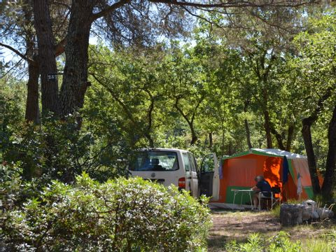 Camping Domaine de la Bergerie - Camping Alpes-Marítimos - Image N°4