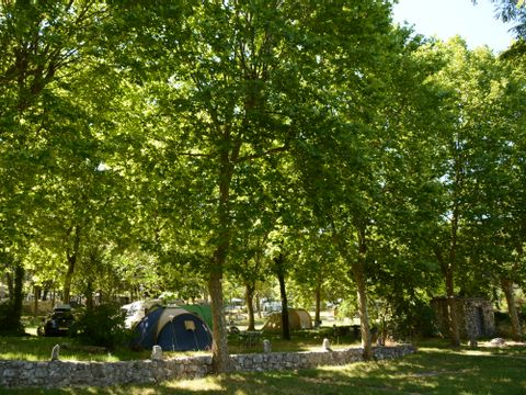 Camping Domaine de la Bergerie - Camping Alpes-Marítimos - Image N°5