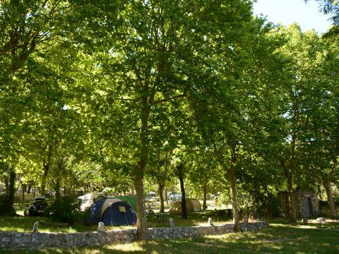 Camping Domaine de la Bergerie - Camping Alpes-Maritimes - Image N°5