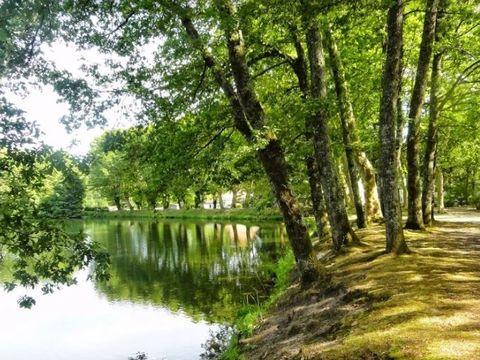 Camping L'Etang d'Ardy - Camping Landes - Image N°6