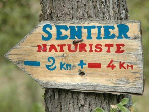Alpes-de-Haute-Provence  Domaine Naturiste Petit Arlane - Camping Alpes-de-Haute-Provence - Afbeelding N°12