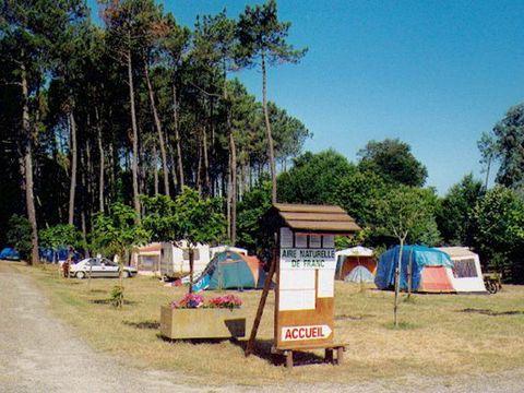 Camping aire naturelle de Franc - Camping Landes