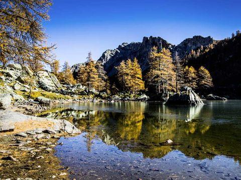 Camping Le Mas Fleuri - Camping Alpes-Maritimes - Image N°22