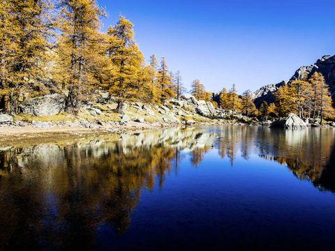 Camping Le Mas Fleuri - Camping Alpes-Maritimes - Image N°20