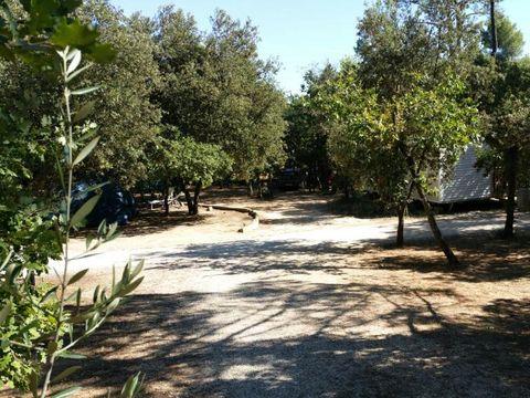 Camping Arc En Ciel - Camping Vaucluse - Image N°10