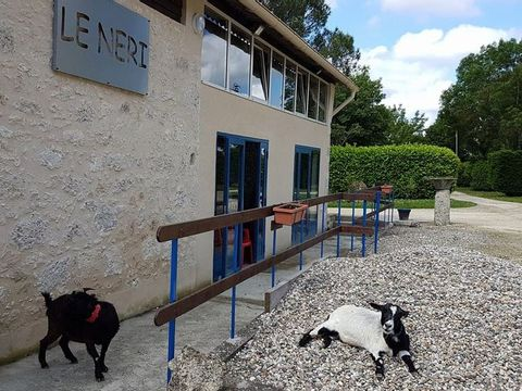 Camping le Néri - Camping Gers - Image N°6