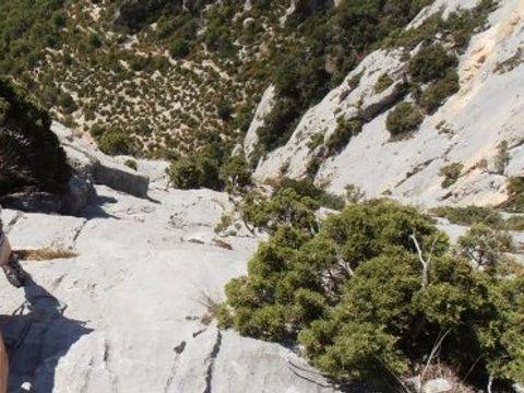 Camping La Célestine - Camping Alpes-de-Haute-Provence - Image N°12