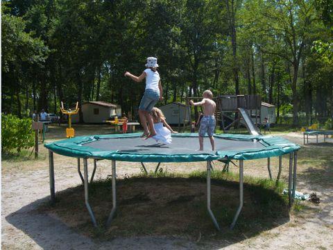 Camping Le Pin - Camping Landes - Image N°9