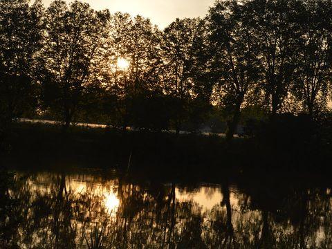Camping L'ile Du Bidounet - Camping Tarn-et-Garonne - Image N°8
