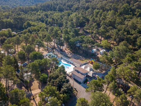 Camping  La Pinède en Provence - Camping Vaucluse - Image N°27