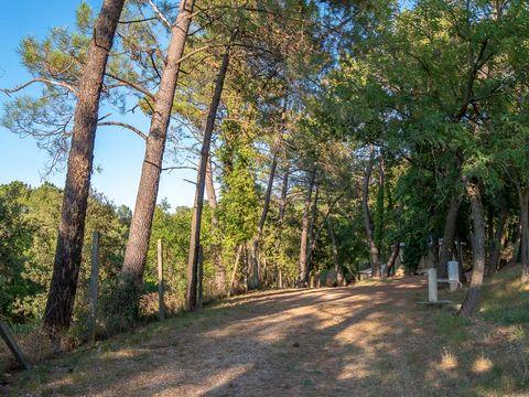 Camping  La Pinède en Provence - Camping Vaucluse - Image N°31