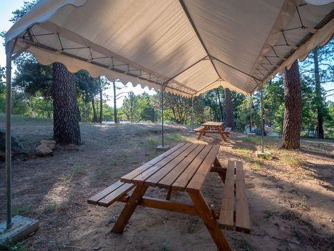 Camping  La Pinède en Provence - Camping Vaucluse - Image N°22