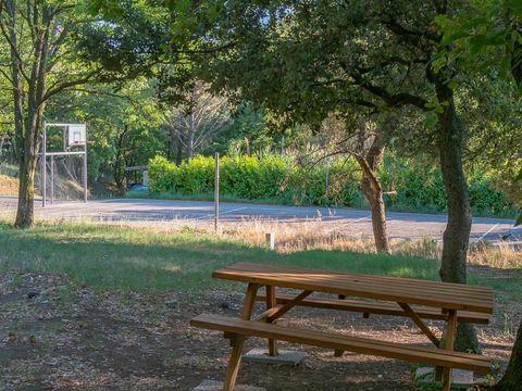 Camping  La Pinède en Provence - Camping Vaucluse - Image N°24