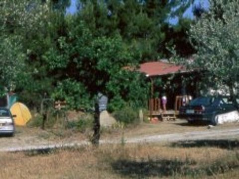 Camping aire naturelle la Cambuse - Camping Vaucluse - Image N°2