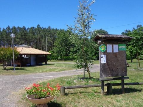 Camping aire naturelle Municipale - Camping Landes - Image N°3