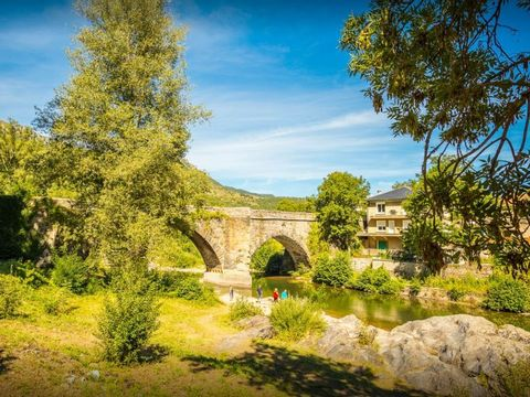Flower Camping le Pont Du Tarn - Camping Lozere - Image N°11