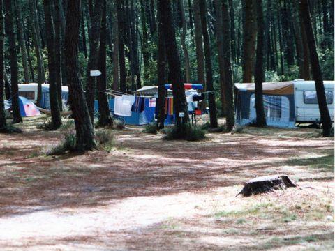 Camping aire naturelle de Boudigues Alban - Camping Landes